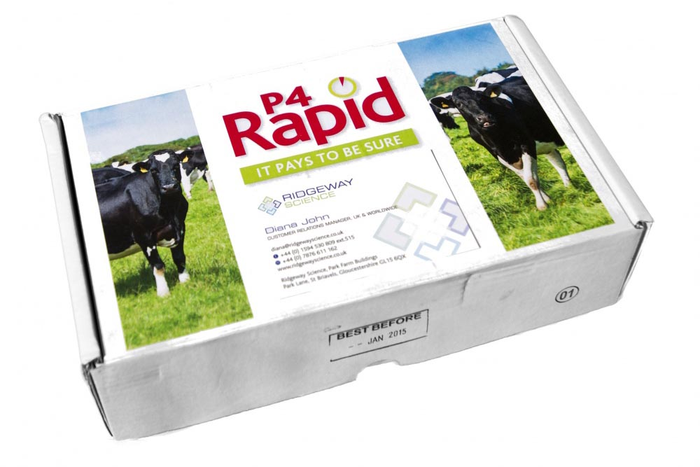 P4 Rapid Progesterone Heat Detection Test